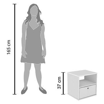 05-3107091-escala-humana