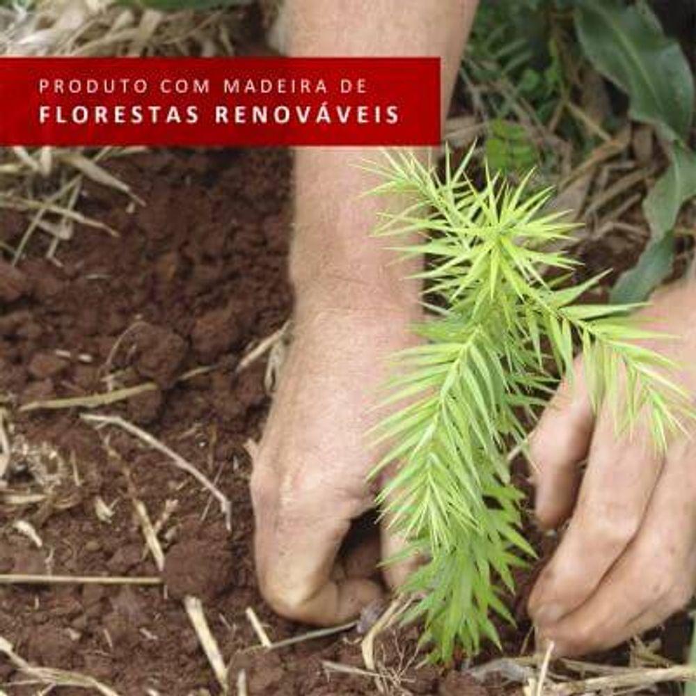 06-10565Q1E4G-florestas-renovaveis