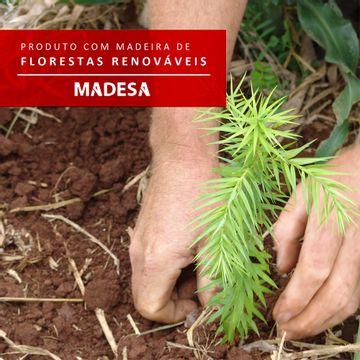 08-G267500909-florestas-renovaveis