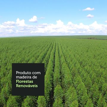 09-1094091E-florestas-renovaveis