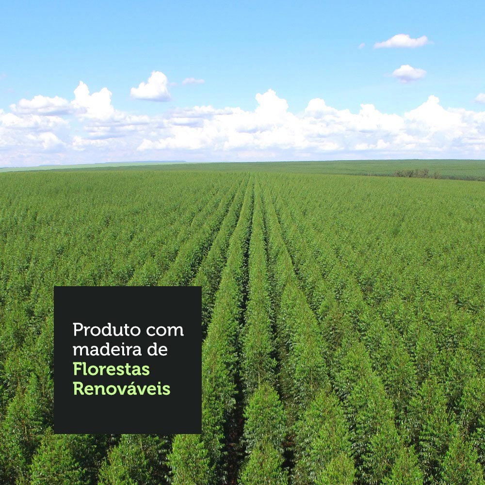 10-1095092E-florestas-renovaveis