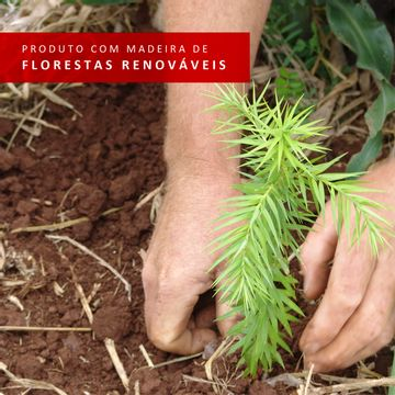07-046025ZSIM--florestas-renovaveis