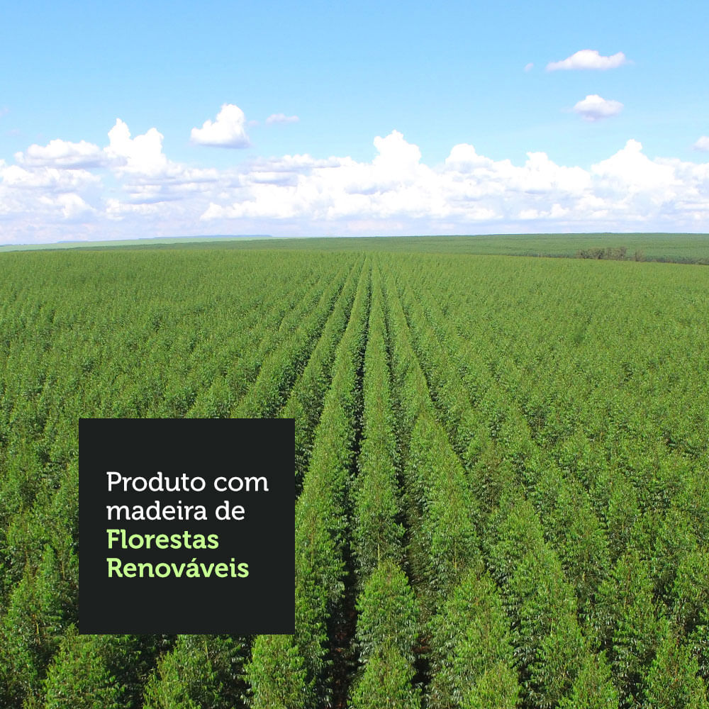 09-GREM1690025Z-florestas-renovaveis-cozinha-compacta-madesa-emilly-169002-com-armario-balcao